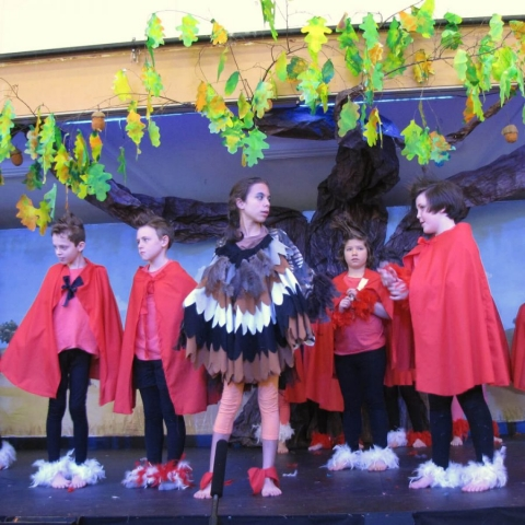 Alternative Primary School Melbourne - School Performance with Turkey & Roosters