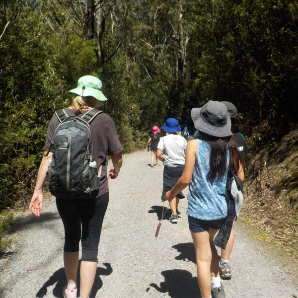 Excursions - Bush Walking Group