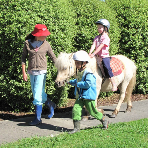 Horse Riding Lessons - Leading a Horse