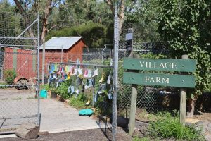 Primary School Curriculum - Farm Gate & Sign