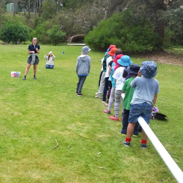 School Camp - Activities & Games