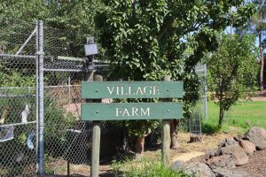 School Farm - Sign & Gate