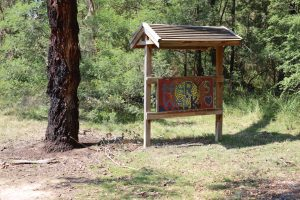 School History - Mary's Bush Walk