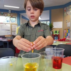 Science & STEAM - Mixing Colours